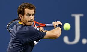 Image result for Andy Murray is picture
