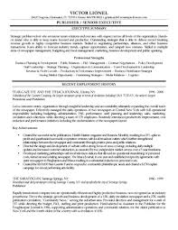 copies of resume lance editor v business plan executive summary gallery of copy of a professional resume