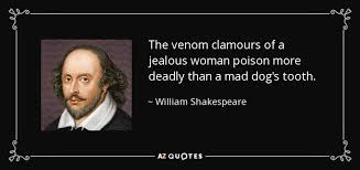 Image result for a jealous woman