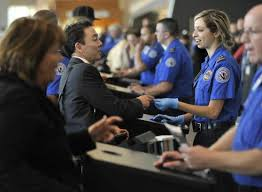 Image result for tsa