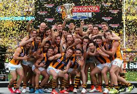 Image result for Hawthorn Premiership 2015