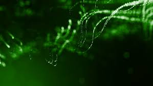 <b>3d Green</b> Background with Fantastic Stock Footage Video (100 ...