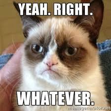 Yeah. Right. Whatever. - Grumpy Cat | Meme Generator via Relatably.com