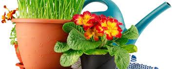 Инвентарь для комнатных <b>растений</b>