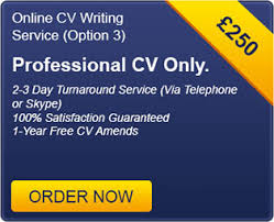 CV Writing Central London   CV Writing Services London   CV     Online Services