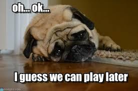 Memes Vault Dog Memes – Disappointed via Relatably.com