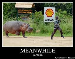 Meanwhile in Africa via Relatably.com