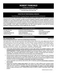director of professional services resumefree resume templates