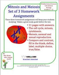 Mitosis and Meiosis and Cell Division Set of   Homework     Pinterest This is a set of three different homework assignments on cell division  mitosis and meiosis  I most often use these as homework assignments to help the