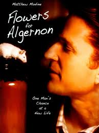 flowers for algernon charlie quotes the best flowers ideas flowers for algernon quotes the best ideas