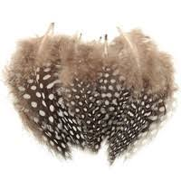 <b>50pcs</b> 4.5-10cm <b>Spotted</b> Guinea Fowl Plumage Feathers Millinery ...