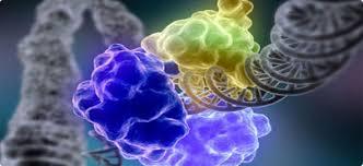 Kalıtsal (Genetik) Hastalıklar