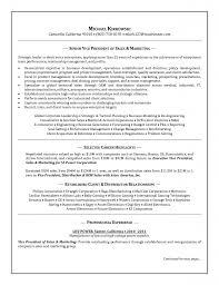 marketing head resume sample director of marketing resume chief entry level marketing resume samples entry level marketing resume samples