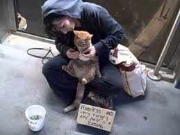 Image result for homeless woman with cat
