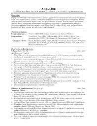 it programmer resume s programmer lewesmr sample resume resume senior programmer amazing creator