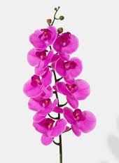 Wholesale <b>Silk</b> Flowers |Artificial <b>Silk</b> Flowers in Bulk
