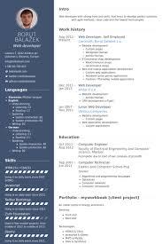 web developer resume samples   visualcv resume samples databaseweb developer  self employed resume samples