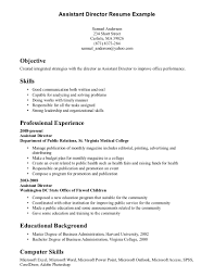 good ability summary resume cipanewsletter cover letter examples of skills and abilities on a resume good