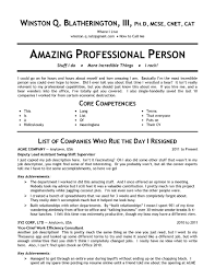 skill set resume resume template  2014 brief resume of skill