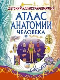 <b>Детский иллюстрированный атлас</b> анатомии человека - Спектор ...
