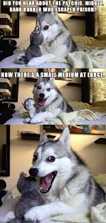 pun dog meme Archives - Boo's FunZone.com via Relatably.com