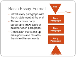 comparison contrast essay