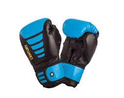 <b>Боксерские</b> перчатки и <b>лапы</b>