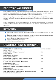 cto cover letter template cto cover letter