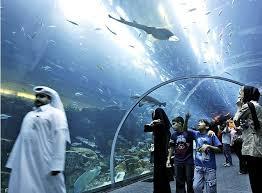 صور لمدينة دبي images?q=tbn:ANd9GcS