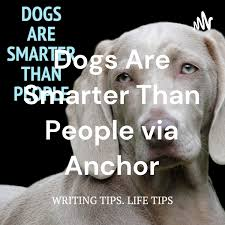 Dogs Are Smarter Than People via Anchor