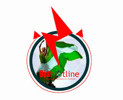 turn your favorite website into ad android app in seconds 9jahotline