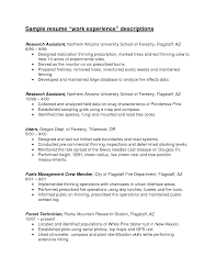 work experience resume example info google resume makerresume sample example of business analyst