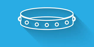 Where to Buy a <b>BDSM Collar</b> Online - Submissive Guide