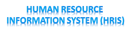 Human Resource Information System (HRIS) Consultants Indonesia