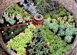 Small Picture 521 best GARDEN Herbs images on Pinterest Organic gardening