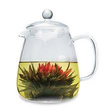 Primula - Coffeeware, Cold Brew, Pour Over and Tea Gift Sets