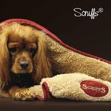 <b>Dog Bed Accessories</b> – petslovescruffs