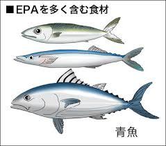 「EPA」の画像検索結果