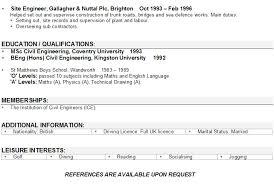 IT Professional CV Template