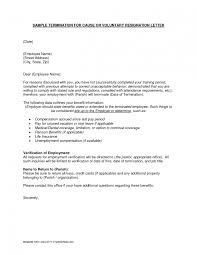 sample resignation letter doc by toksbaby samples resignation sample resignation letter reason the great 10 resignation letter of resignation examples nursing letter of