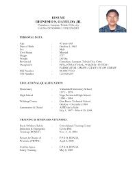 sample resume for mechanic sample resume  resume