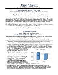 business development executive resume servicebusiness development executive