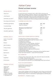 Resume For Job Seeker With No Experience   Business Insider