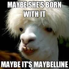 Bad Hair Day Llama memes   quickmeme via Relatably.com