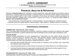 professional resume analysis report