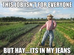 scarecrow-meme-hay.jpg via Relatably.com