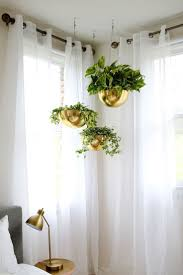 room plants x: hanging plants in a crisp guest room plants in bedroom feng shui