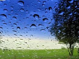 Resultado de imagem para imagem chuva na roça