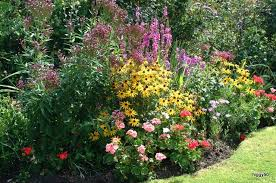 Small Picture Garden Design Garden Design with Beautiful garden borders Cool