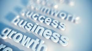 frank ziovas fz consulting business success